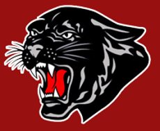 North Magoffin Elementary black panther logo