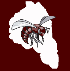 Middle School map and bee logo