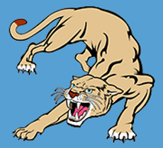 South Magoffin Elementary tan panther logo