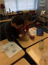 "Mrs. Tiffany Risner's  students completed an investigation for:  ""How much will 100 drops of water fill a cup?"""